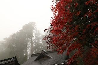 Photo: 安野谷