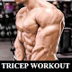 Download Tricep Workout For Gain Size For PC Windows and Mac
