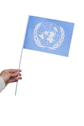 Pappersflagga, FN