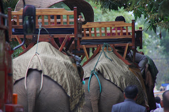 Photo: Day 261 -  Does My Bottom Look Big In This  (Laos)