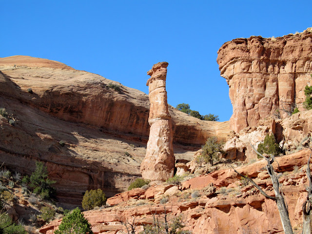 Tall sandstone pillar
