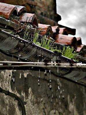 Piove... di Marchingegno
