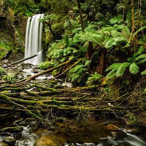 Hopetoun Falls by Madhujith Venkatakrishna - Landscapes Forests