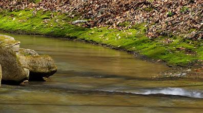 Photo: Gladon Creek