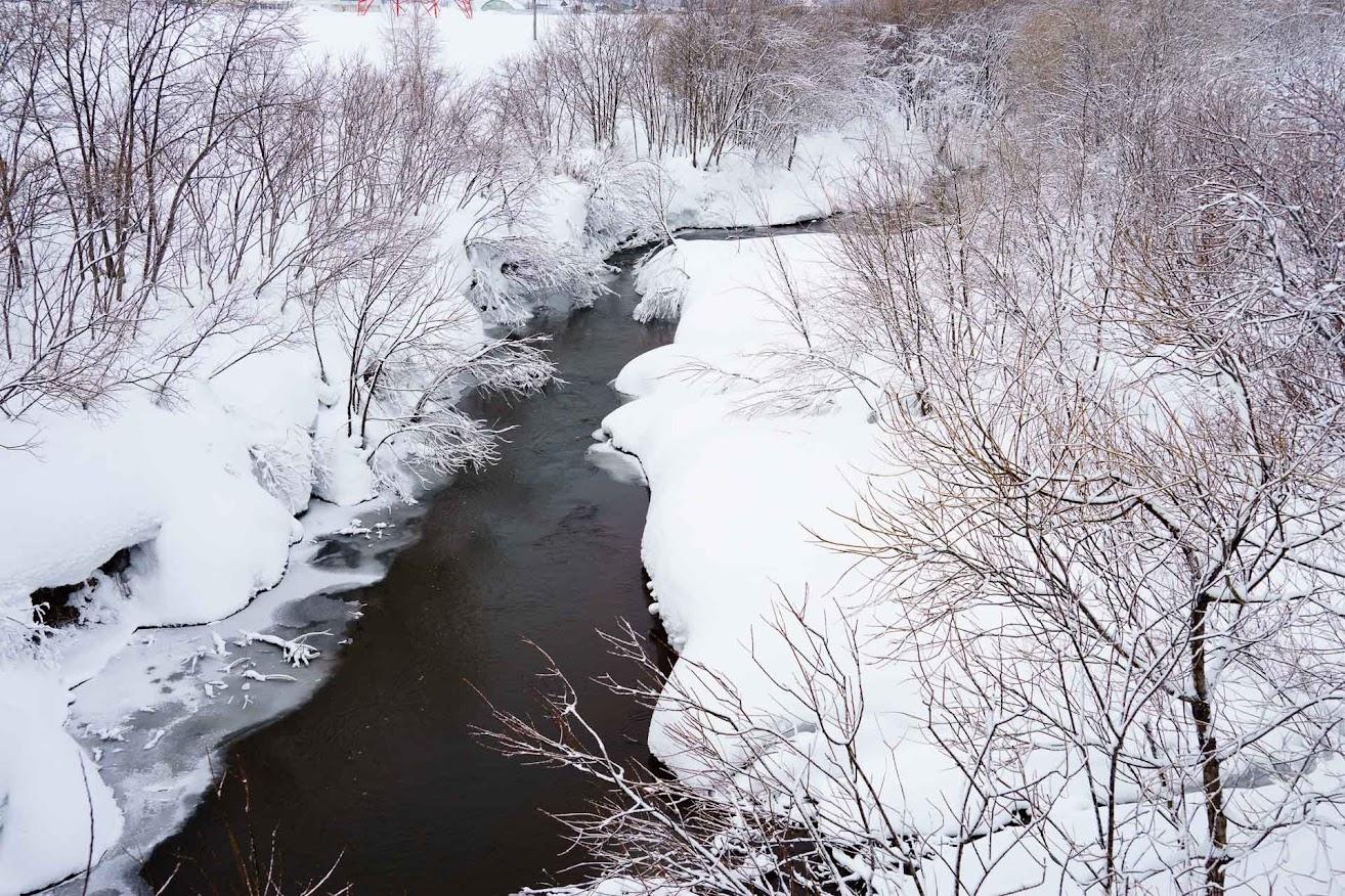 雪に覆われた川の流れ
