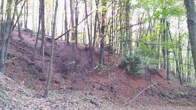 Photo: Das Gelände westlich der Mauer mit Pfad-Abzweig beim Strom-Masten.