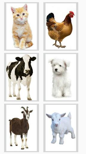 Speak Animals 1.0 screenshots 2