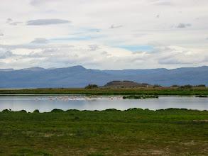 Photo: Laguna Nimez bird sanctuary in El Calafate