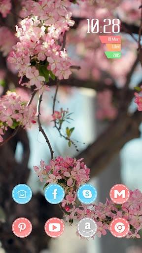唯美苹果花主题