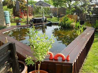 Fish pond design ideas android apps on google play for Koi pond size requirements