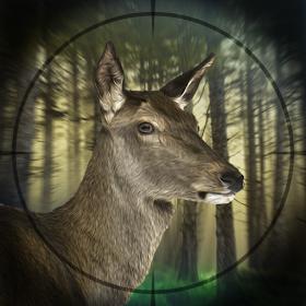 Deer Hunter Expert