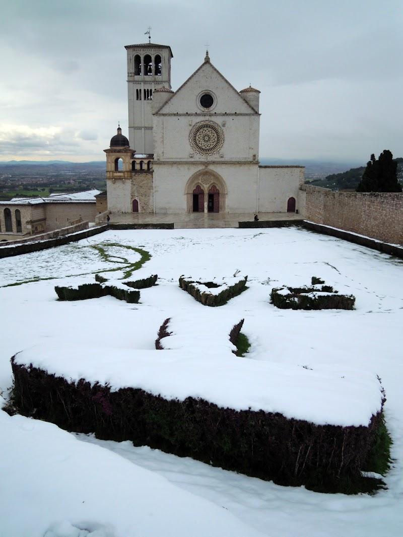 TAU di San Francesco di MWALTER