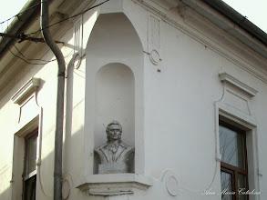 Photo: Bustul lui Mihai Eminescu - (2010.02.19)