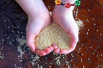 Photo: http://www.hippressurecooking.com/pressure-cooking-boosts-quinoa-nutrition/