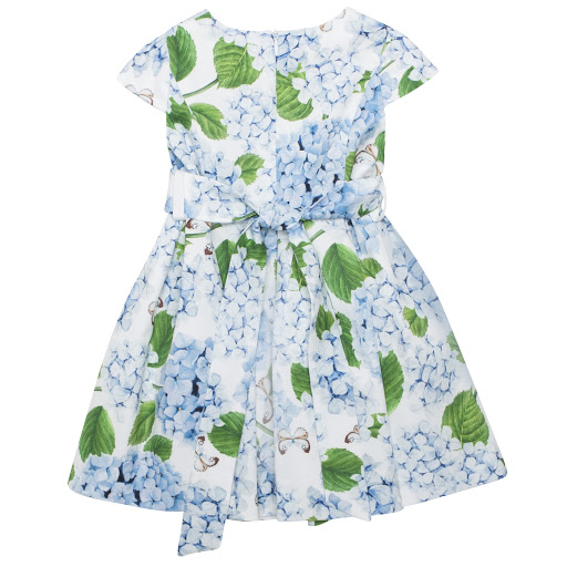 Thumbnail images of Special Day Hydrangeas & Butterfly Dress