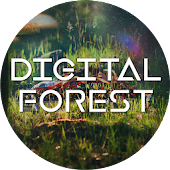 Digital Forest 2017