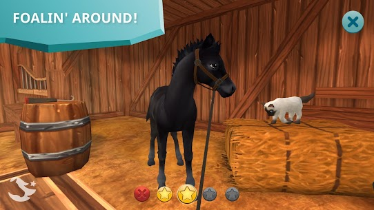 Star Stable Horses 6
