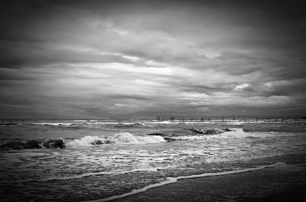 Il mare di primavera . . . di Hanami