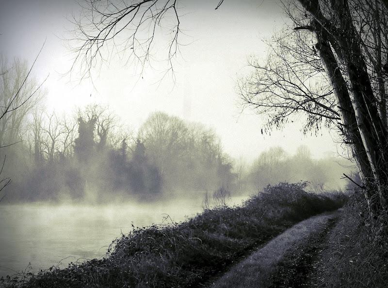Lungo il canale, una fredda mattina... di d