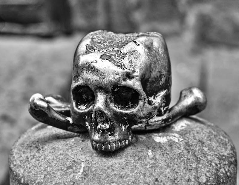 Bones-Ossa di Alessandro Isaia