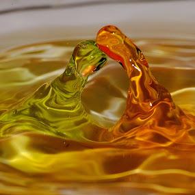 Tandem Dance by Nirmal Kumar - Abstract Water Drops & Splashes
