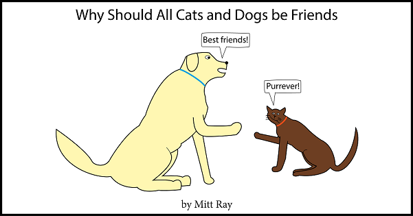 Why Should All Cats and Dogs Be Friends