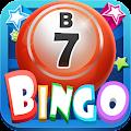Bingo Fever - Free Bingo Game download