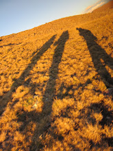 Photo: Long shadows right before the sun disappeared and we trudged along Snow Mesa for hours.