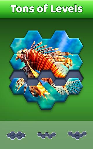 Hexa Jigsaw Puzzleu2122  screenshots 2