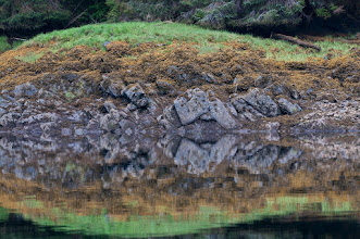 Photo: Shore reflections