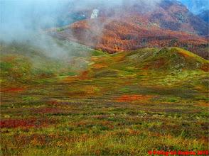 Photo: IMG_4103 i colori dell autunno sull appennino reggiano dallo 00 EXTRAVIVACE