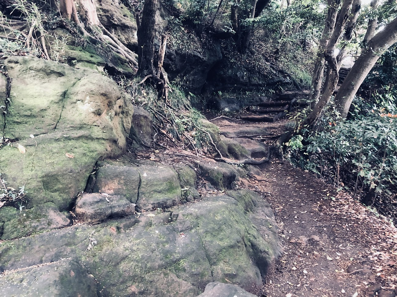 Tenen Hiking trail