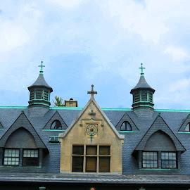 Biltmore Estate - Roof Details by Rita Goebert - Buildings & Architecture Architectural Detail ( asheville; north carolins; biltmore estate; historic homes; flower gardens; pubs; craft demonstrations; farm museum; tours;,  )