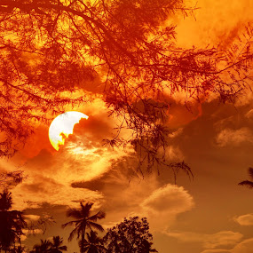 sunset by B Thottoli - Nature Up Close Other Natural Objects ( sunset, sun )