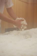 Photo: 麹造り