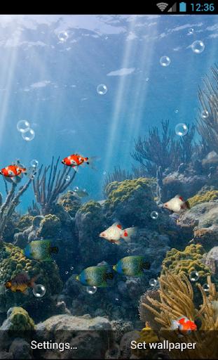 Aquarium Live Wallpaper Free  screenshots 5