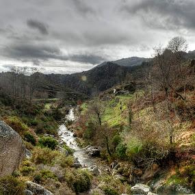 Alvão Natural Park by Júlio Alves - Landscapes Mountains & Hills ( water, national park, park, green, vila real, sunlight, portugal, landscape, alvão, river )