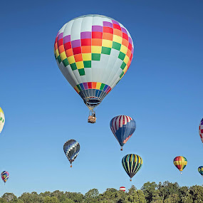 Hot Air Balloons, Harrison, AR by Jay Stout - Transportation Other (  )