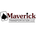 Drive Maverick icon
