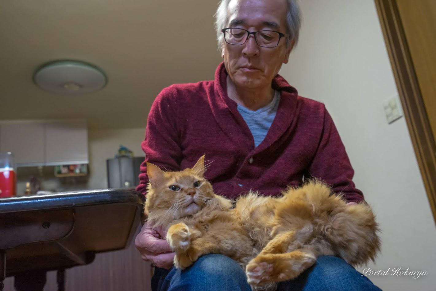 義幸 爺ちゃん(66歳)の膝は落ち着くニャー ♫