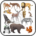 Animal Sound for Kids icon