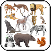 Animal Sound for Kids