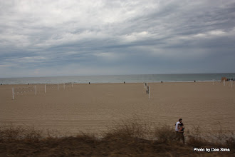 Photo: (Year 3) Day 30 - Volleyball Nets on the Beach of Santa Monica
