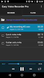 Easy Voice Recorder Pro Screenshot 2