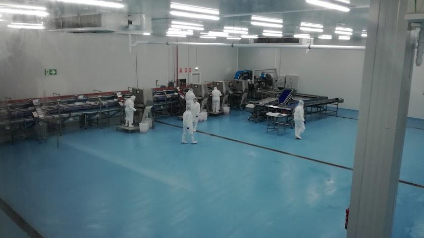 Zona de procesamiento del producto en frío en la planta de La Unión