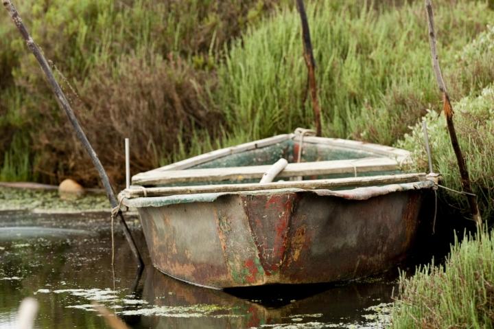 Ancora galleggia di Andrea Izzotti
