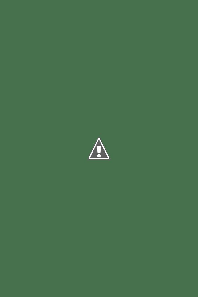 Платья на осень в интернет-магазине
