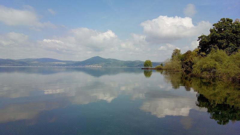Riflesso del salice sul lago di heaven1985k