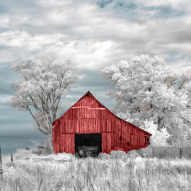Timeless by Ken Smith - Buildings & Architecture Decaying & Abandoned ( rural nebraska, infared, barns, landscape )