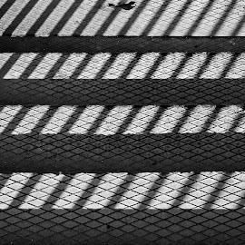 by Estislav Ploshtakov - Abstract Patterns